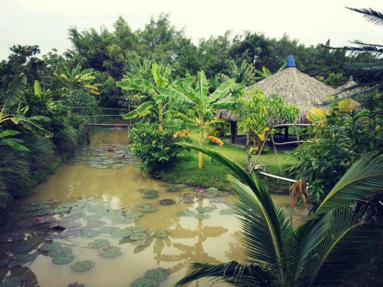 Địa điểm du lịch 2/9 gần Sài Gòn - Long Phước gần Sài Gòn